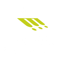 Lukaitis Lawyers - team shadow